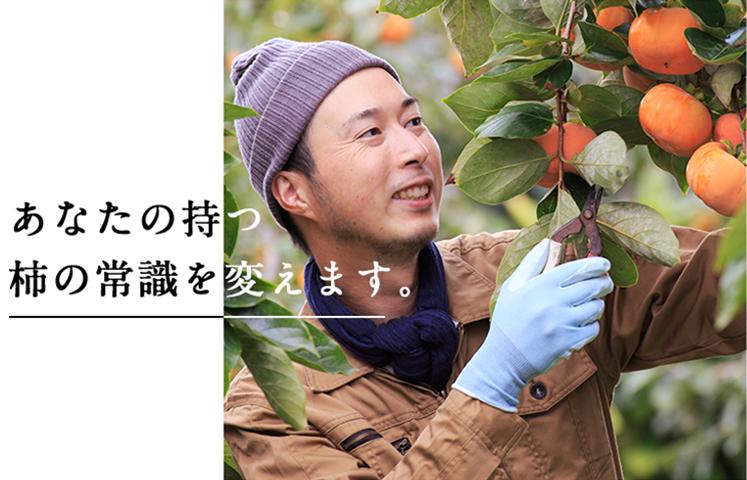 あなたのもつ柿の常識を変えます