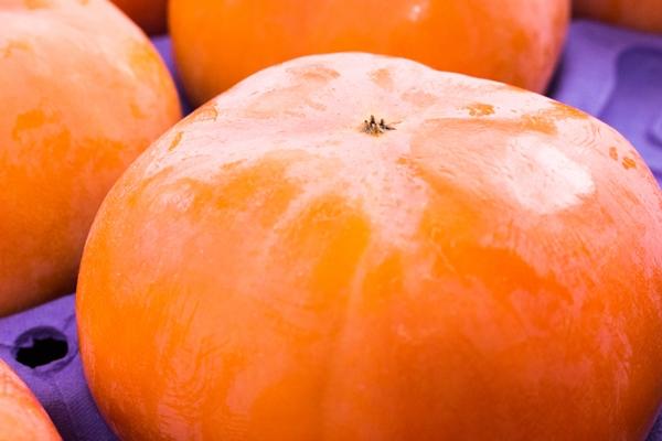次郎柿は大きくて迫力のある柿です