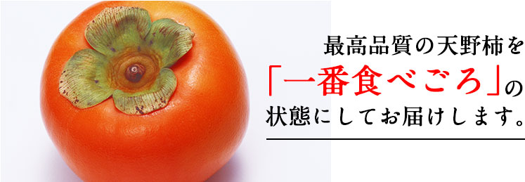 天野柿を食べごろの状態でお届けします