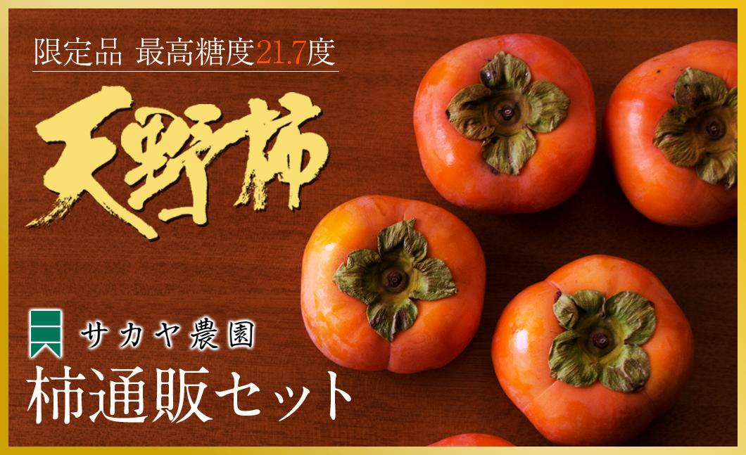 天野柿通販セット