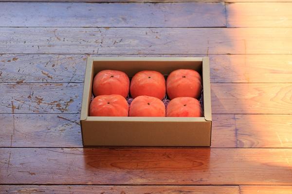 次郎柿通販1.6kgセット