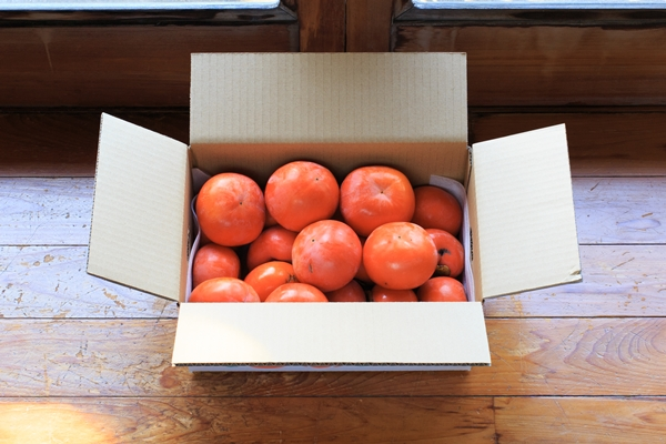 富有柿通販ご家庭用セット